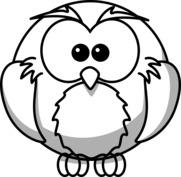 Animowana sowa