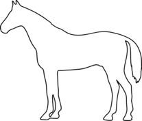 Koń szablon