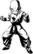 Anime łysy wojownik