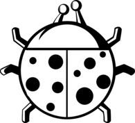 Okrągła biedronka