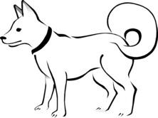 Szablon psa
