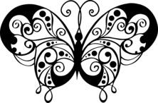Szczegółowy motyl