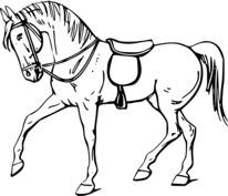 Koń z siodłem