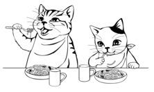 Kot i jedzenie