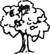 Ciemne drzewo