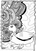 Mandala kaczka