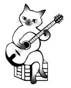 Kot gitarzysta