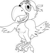 Papuga pirata