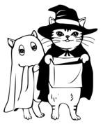 Kot w przebraniu