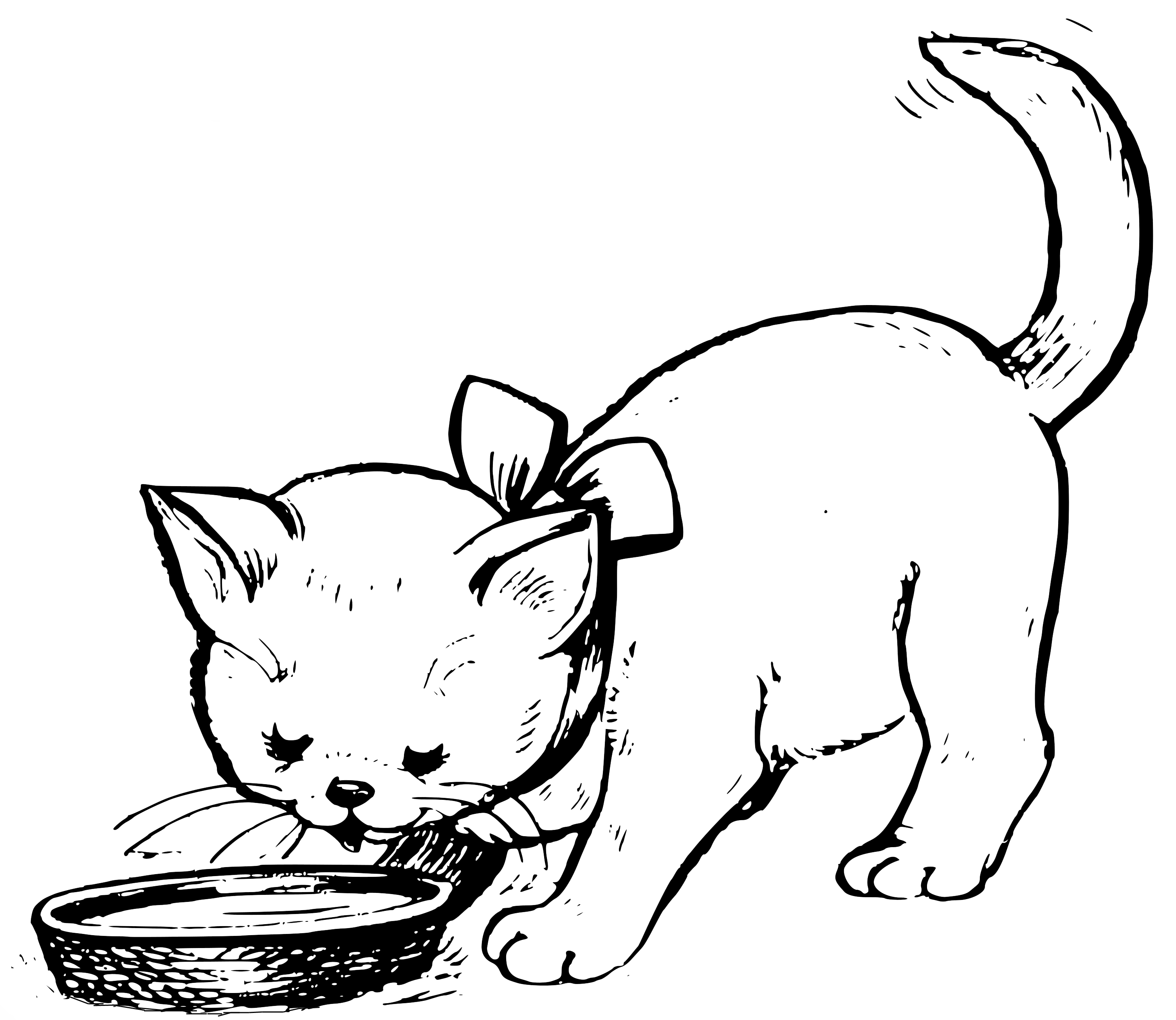 Kot Pijacy Mleko Kolorowanka Do Druku